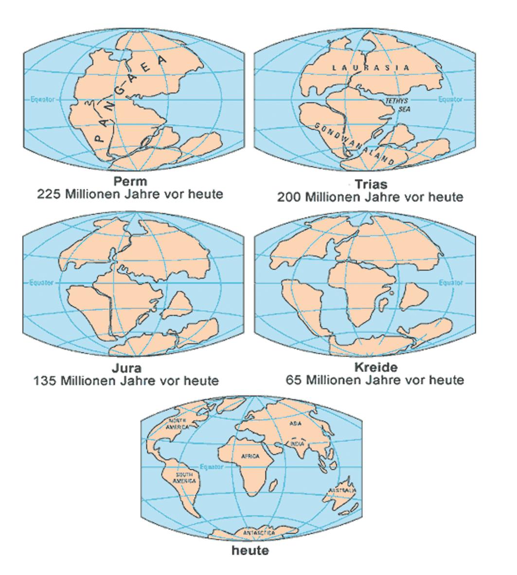 Kontinentaldriftung und Polsprünge - GAIA-VERMÄCHTNIS